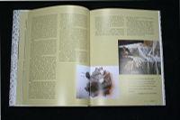 Книга-альбом Оренбургский пуховый платок Ирины Бушухиной
